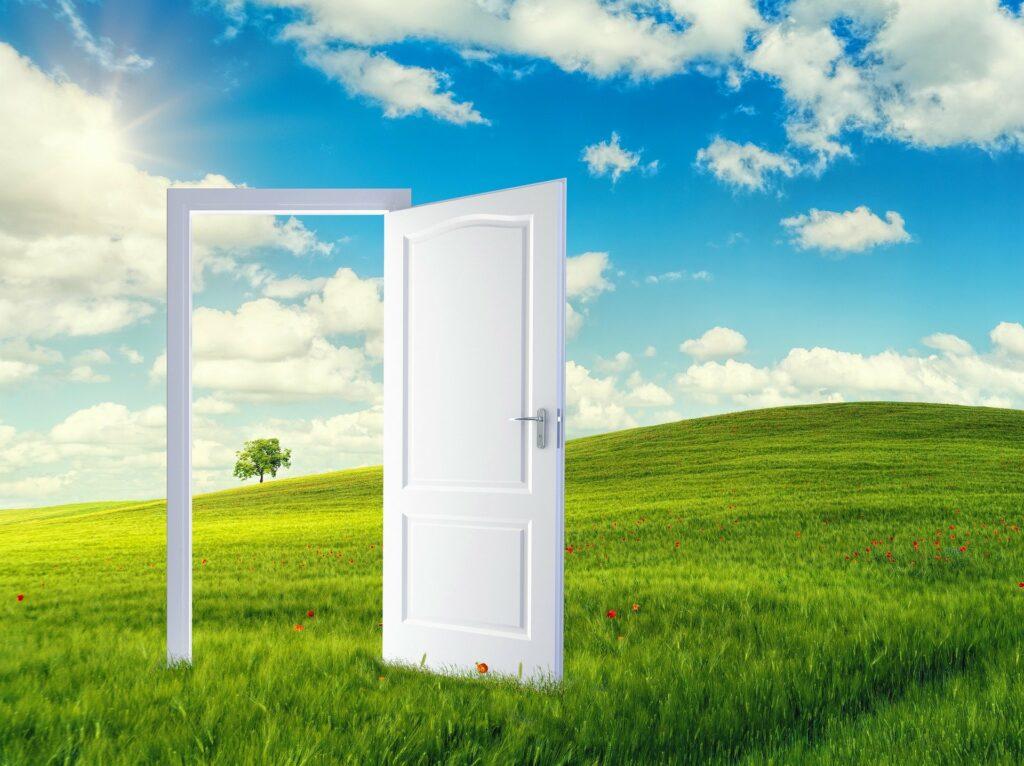 geöffnete weiße Tür auf einer grünen Wiese